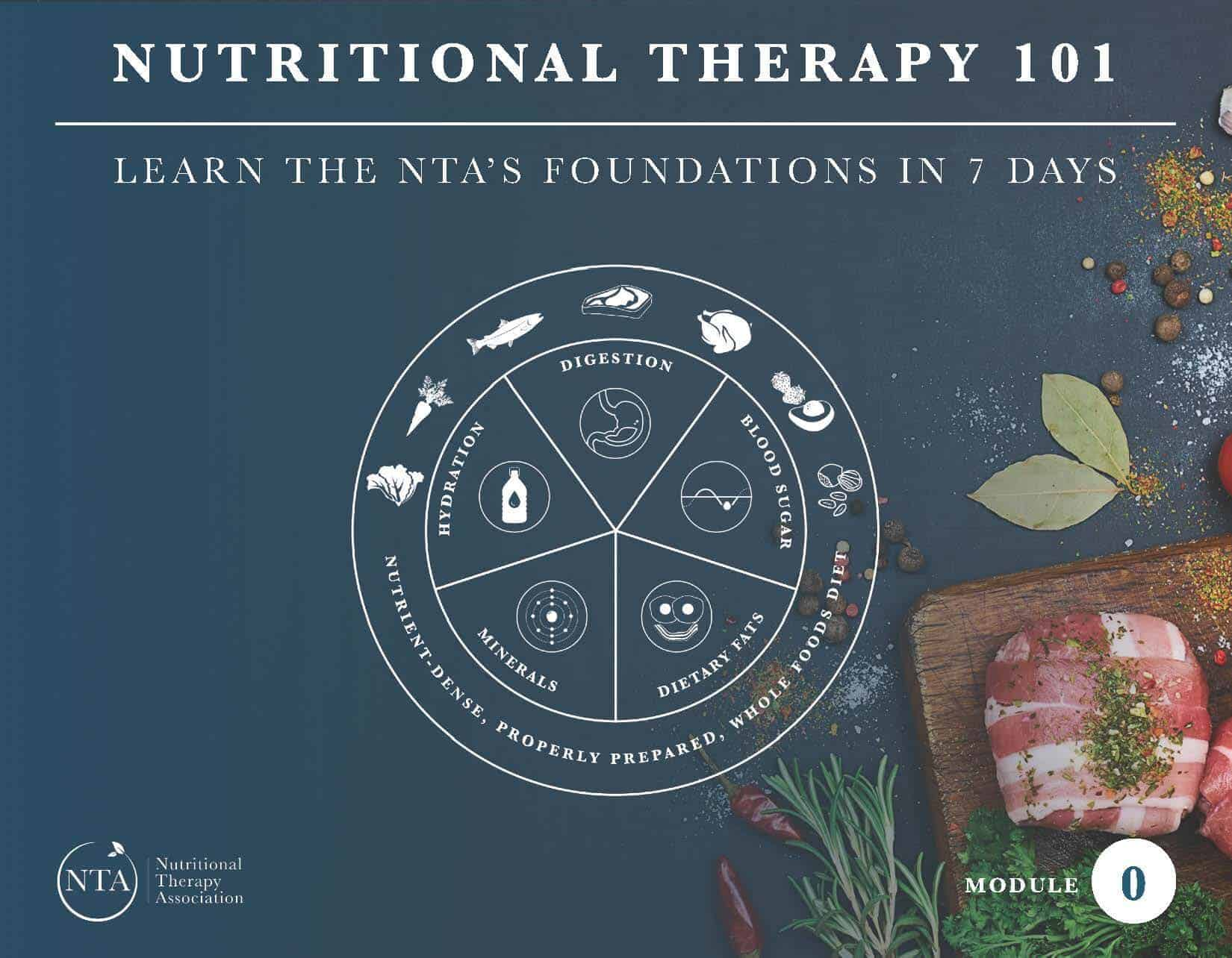 Image result for nutritional therapy association logo
