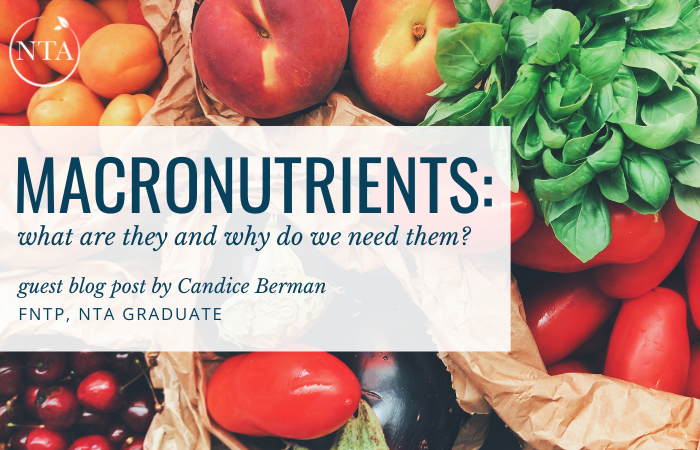 Macronutrients: What Are They and Why Do We Need Them?